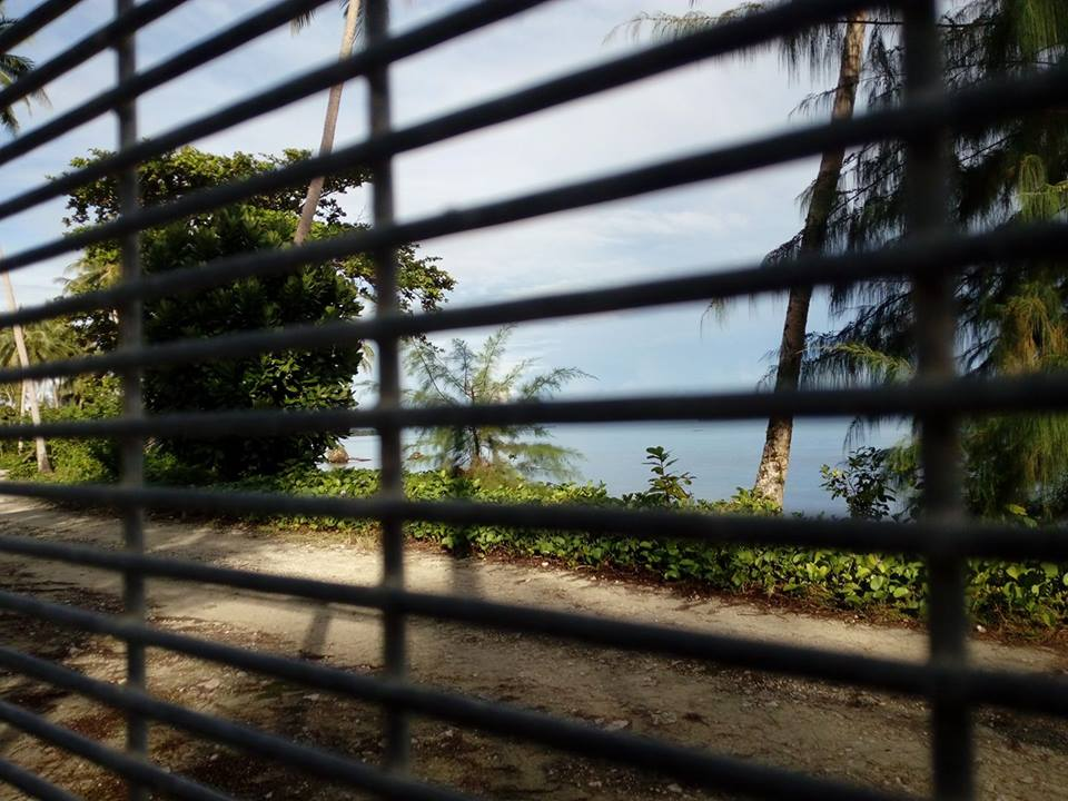 A view from the former Manus RPC at Lombrum. Looking through the fence toward the trees and ocean.