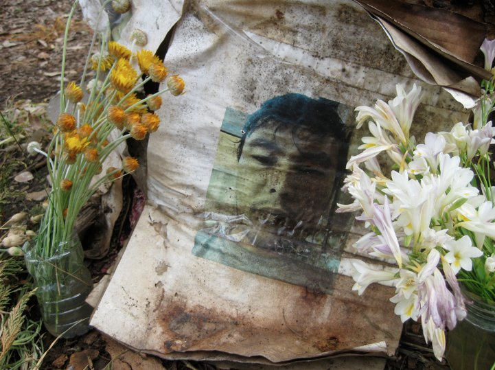 A weathered photo of Khodayar Amini, framed by flowers at the base of a tree at the site of his self-immolation.