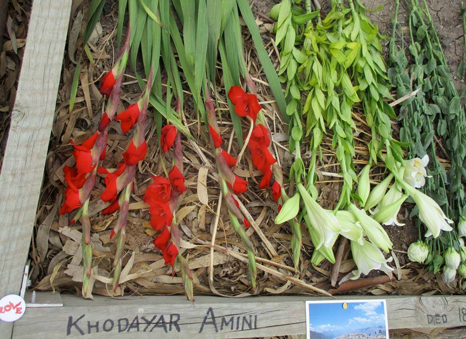Flowers laid at Khodayar's burial site.