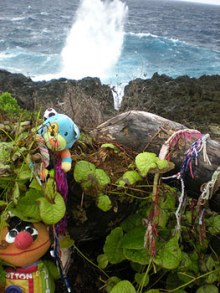 Childrens toys are left at a memorial on the top of a rocky cliff. Leaves grow around and over the toys. A large wave crashes at the base of the cliff.