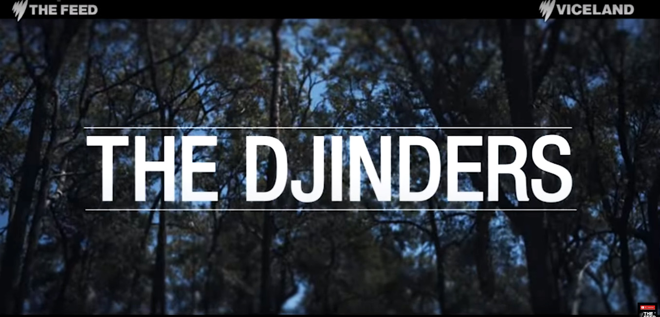 'The Djinders' is written in bold, white capital letters across the centre of the screen. The text is overlaid on a background of trees in the bush.